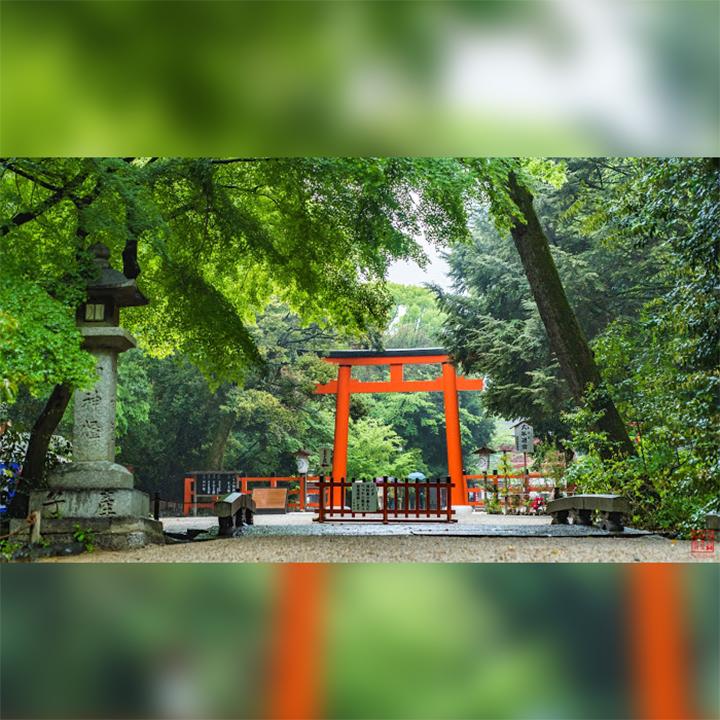 Japan-Kyoto-Shimogamo-jinja