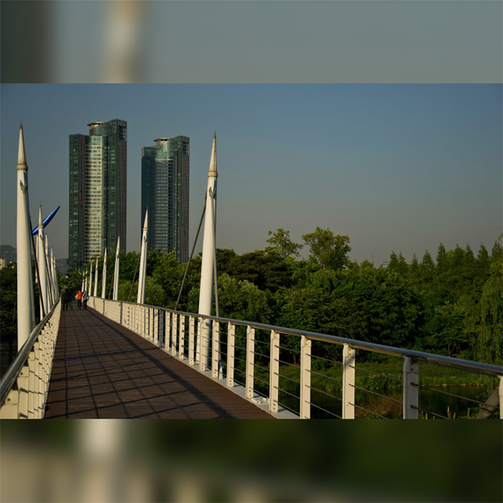 korea-seoul-forest